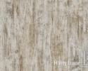 Plastificado Harry Luxor