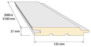 Nelio-Color-Seccion-Tecnica